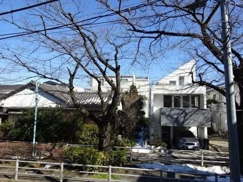 ロータス都立大学 / 203 部屋画像11
