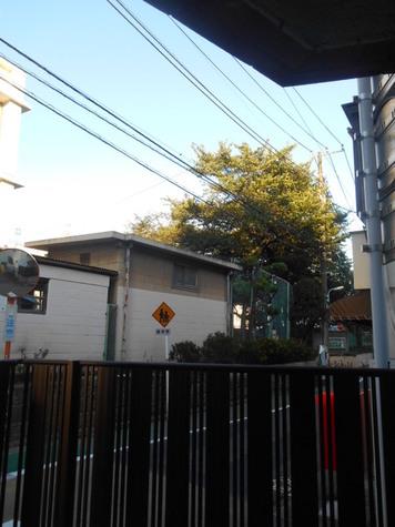 青葉台イノセンス / 1階 部屋画像12