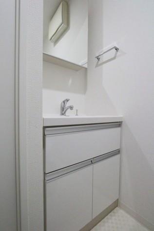 洗面台(サニタリールーム)
