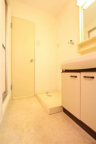 参考写真:洗面・洗濯機置場(3階・別タイプ)