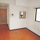 ハイネス多摩川 / 4階 部屋画像12