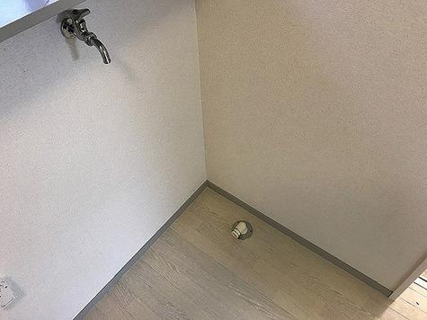 サトウハイツ / 103 部屋画像12