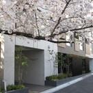 グローブプレイス六本木永坂 / 3階 部屋画像13
