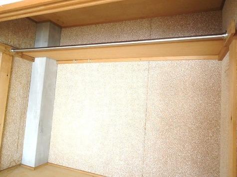 リバーサイド丸山 / 301 部屋画像13