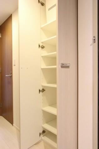 参考写真:玄関収納(7階・別タイプ)