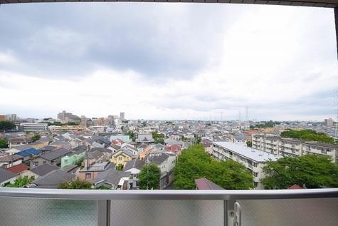シンシティ上北沢ジーベック / 8階 部屋画像15