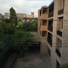 ガーデン都立大学 / 3階 部屋画像15