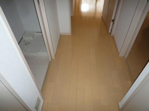 クリオ文京小石川 / 7階 部屋画像2