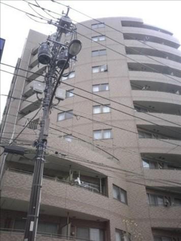 HF白山レジデンス(旧レジデンス向丘) / 8階 部屋画像2