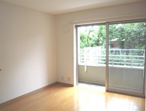 ラピスコート菊名 / 1階 部屋画像2