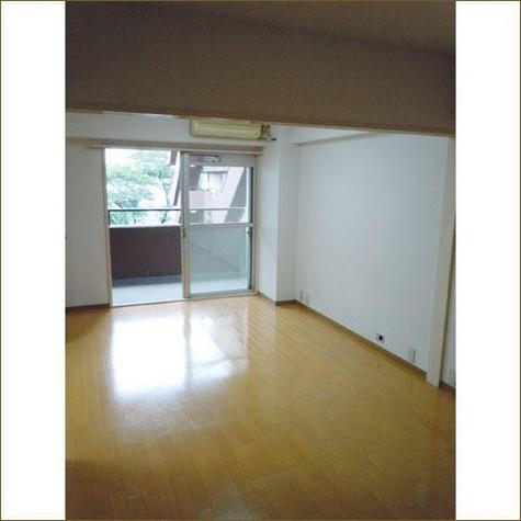 インペリアル広尾 / 5階 部屋画像2