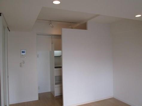 YOTSUYA DUPLEX D-R / 5階 部屋画像2