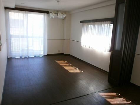 アパートメントカヤ田園調布 / 303 部屋画像2
