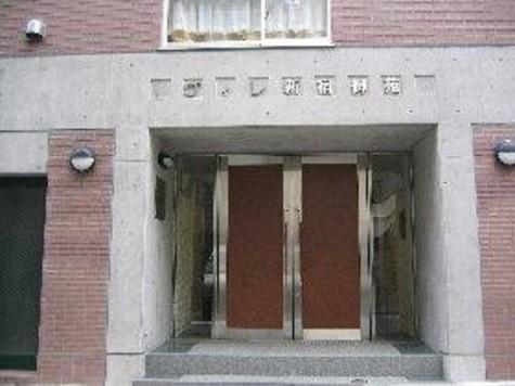 ヴィレ新宿御苑 / 1階 部屋画像2