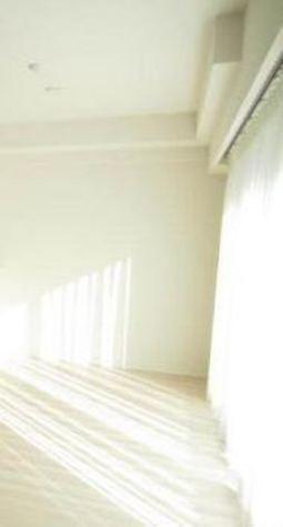 クレヴィア田園調布本町 / 3階 部屋画像2
