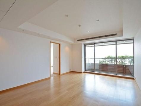 赤坂溜池タワーレジデンス / 20階 部屋画像2