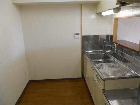 大岡山マンション / 2階 部屋画像2