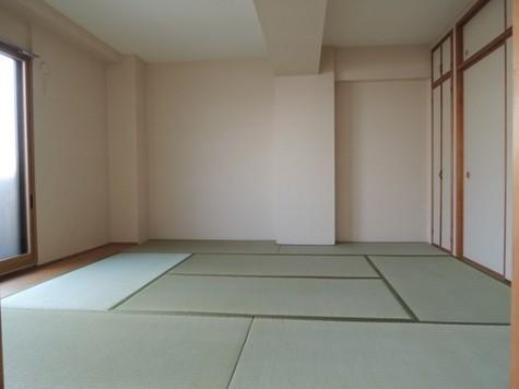 アルファパレス / 2階 部屋画像3