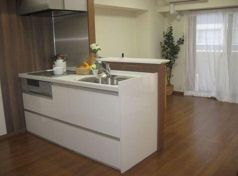 ライオンズプラザ新横浜 / 3階 部屋画像3