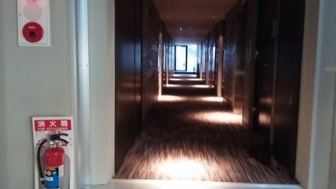 絨毯張りの内廊下