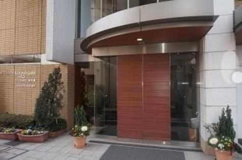 フォレストタウン参宮橋 / 302 部屋画像3