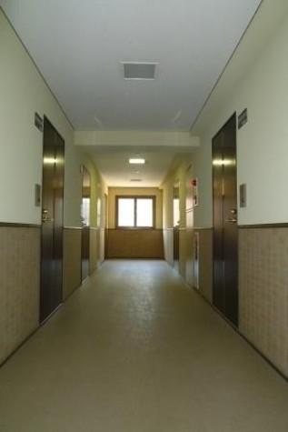 雨にも濡れない内廊下です。