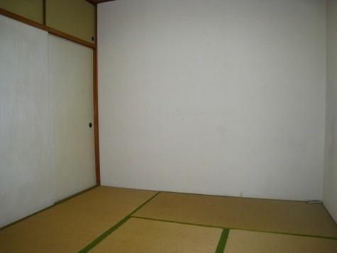 コーポコダチ / 1階 部屋画像3