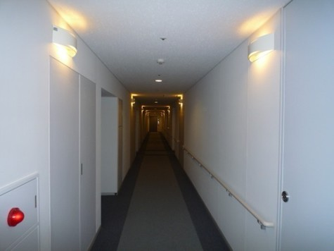 プラザタワー勝どき / 33階 部屋画像3