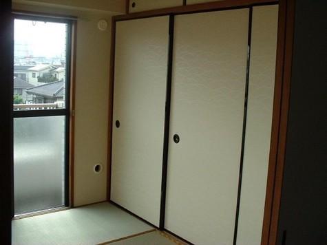 メゾンシャルム / 301 部屋画像4