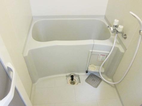 ウインズ洗足池 / 301 部屋画像4