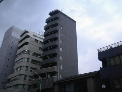 シンシア本郷三丁目 / 6階 部屋画像4