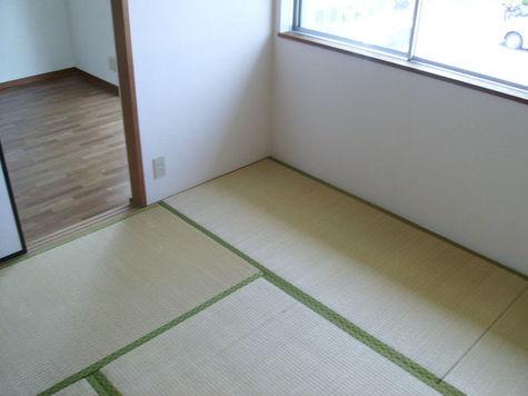 グリーンハイツ末広 / 203 部屋画像4