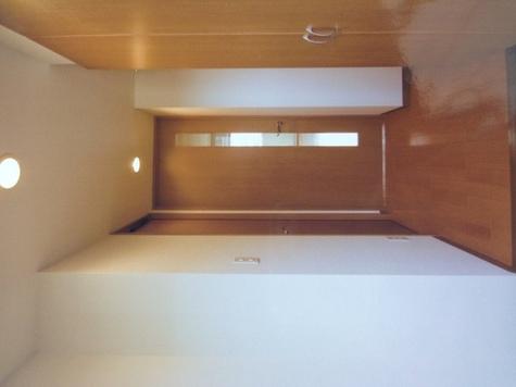 メゾンカトーレ / 207 部屋画像4