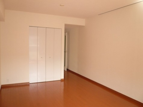 カナーリス月島 / 5階 部屋画像4