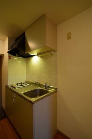 菱和パレス五反田西 / 11階 部屋画像4