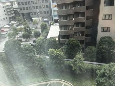 シティタワー麻布十番 / 6階 部屋画像4