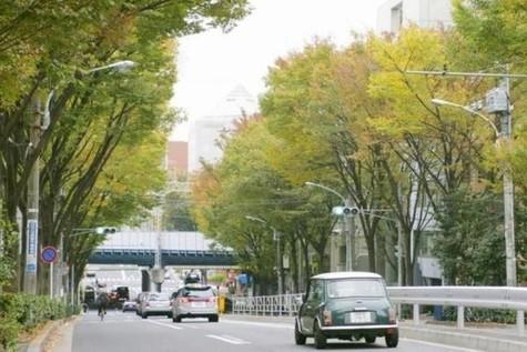アパートメンツ代々木上原 / 1階 部屋画像5