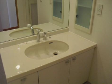 大きな鏡のある洗面台。収納スペースもあります