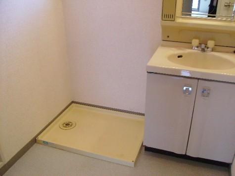 洗面化粧台・洗濯機置場