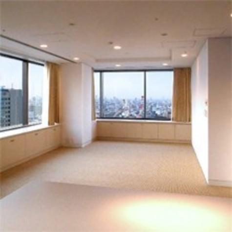 紀尾井町ガーデンタワー / 24階 部屋画像5