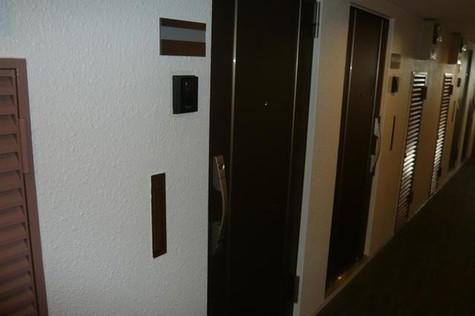バルミー赤坂 / 5階 部屋画像5