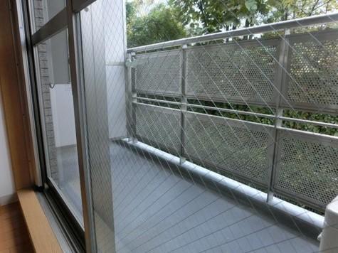 広尾レジデンスA棟(旧レジディア広尾(A棟)) / 306 部屋画像5
