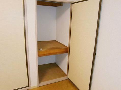 石川台 8分アパート / 203 部屋画像5