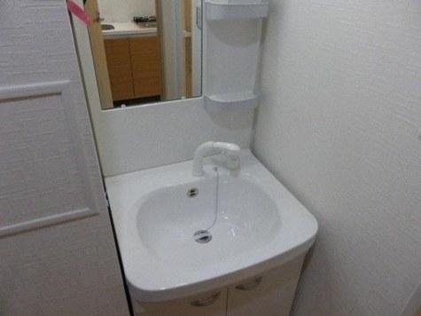 参考写真:洗面台(別タイプ)