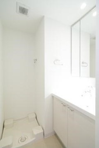 参考写真:洗面・脱衣室(別タイプ)