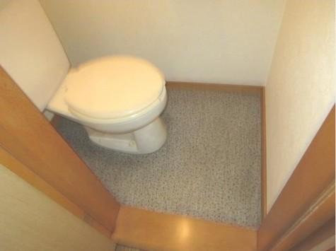 ウスイグリーンハイツ / 2階 部屋画像6