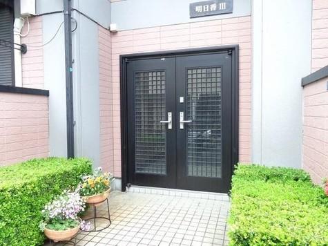 メゾン明日香3 / 2階 部屋画像6