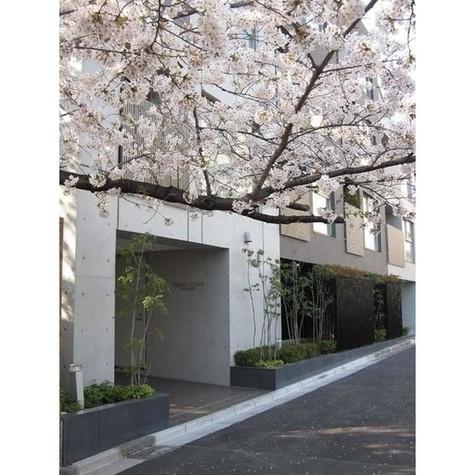 グローブプレイス六本木永坂 / 5階 部屋画像7