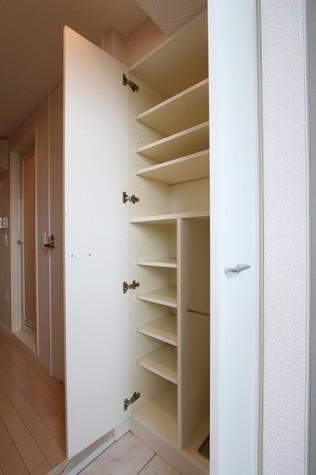 参考写真:玄関収納(7階・類似タイプ)