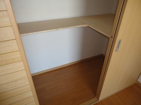 メゾン赤松 (南千束2) / 501 部屋画像7